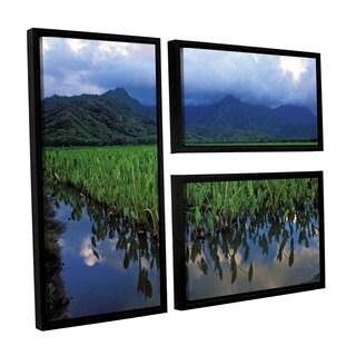 ArtWall Kathy Yates's Kauai Taro Field, 3 Piece Floater Framed Canvas Flag Set