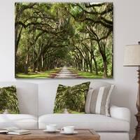 Designart - Live Oak Tunnel  Photography Canvas Art Print