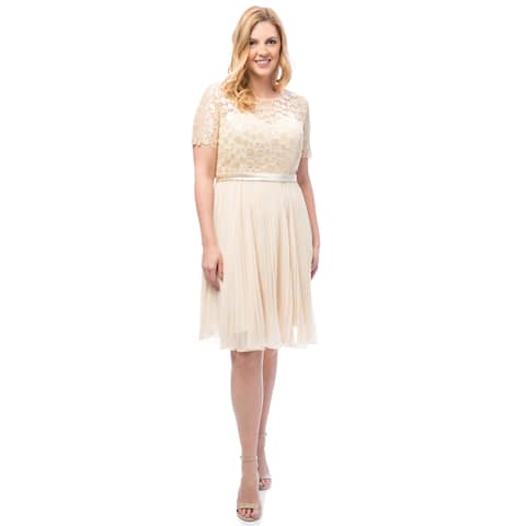38a75c10dc7 Robin DS Women's Plus Shiny Sequinned top Cocktail Dress with Pleated  Chiffon Skirt