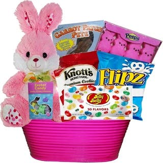 Easter gift baskets for less overstock bunny treats chocolate and candy easter gift basket negle