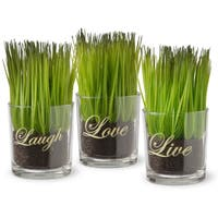 Porch & Den Hazelwood Halsey Printed 'Live, Laugh, Love' Glass Pots with Artificial Grass (Set of 3)