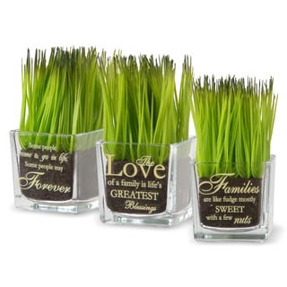 National Tree Company 'Family' Printed Square Glass Pot with Artificial Grass (Set of 3)