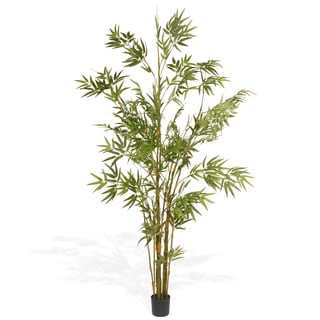 National Tree Company 69.6-inch Japanese Potted Bamboo Tree