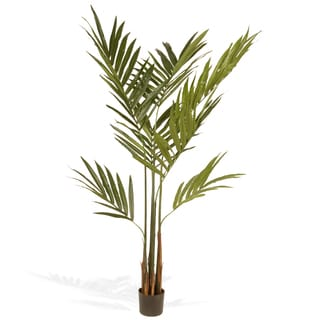 National Tree Company 69-inch Kentia Palm Potted Tree