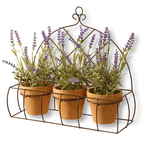 National Tree Company Lavender Pots in Metal Holder