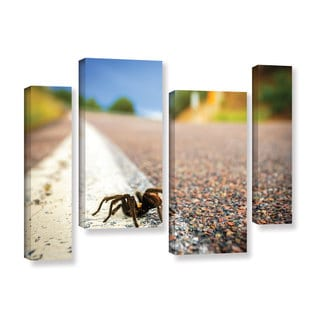 ArtWall Cody York's Tarantula, 4 Piece Gallery Wrapped Canvas Staggered Set
