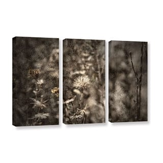 ArtWall Mark Ross's Dormant, 3 Piece Gallery Wrapped Canvas Set
