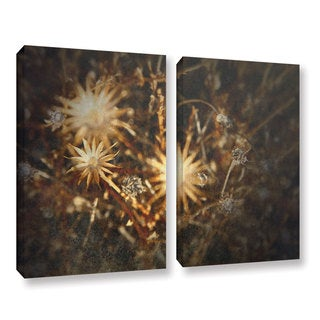 ArtWall Mark Ross's Falling Towards Stars, 2 Piece Gallery Wrapped Canvas Set