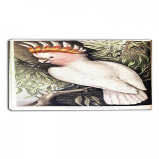 Design Art 'James Whitley Sayer - Leadbeaters Cockatoo' Animal Canvas Art