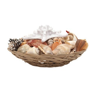 Sea Shell Bowl 11-inch x 5-inch