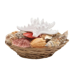 Sea Shell Bowl 8-inch x 4-inch