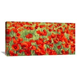 Big Canvas Co. Silvia Mei 'Poppy Field' Stretched Canvas Artwork