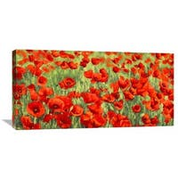 Global Gallery Silvia Mei 'Poppy Field' Stretched Canvas Artwork - Red