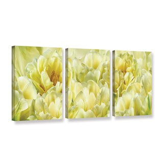 ArtWall Cora Niele's Yellow, 3 Piece Gallery Wrapped Canvas Set
