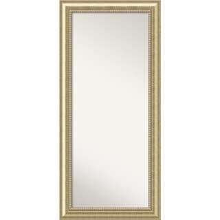 The Gray Barn Autumn Avenue Champagne Wood Floor Leaner Mirror - 31 x 67-inch