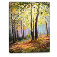 Designart - Spring Forest with Sunlight - Landscape Canvas Art Print - Green