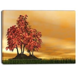 Designart - Bonsai Landscape  Photography Canvas Art Print