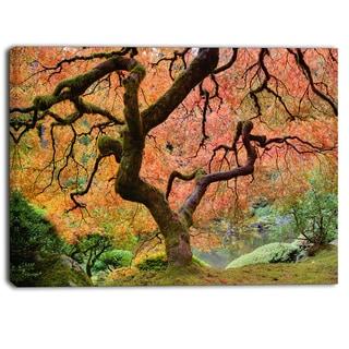 Designart - Autumn Maple Tree - Landscape Photography Canvas Print