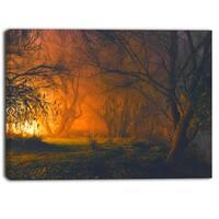Designart Magical Light in Forest Landscape Canvas Art Print - Orange