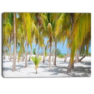 Designart - Palm Trees - Landscape Photography Canvas Art Print
