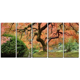 Designart - Old Japanese Maple Tree - 5 Piece Landscape Photography Canvas Print
