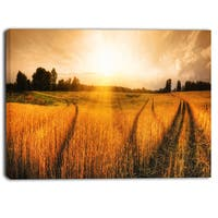 Designart - Wheat Field at Sunset Panorama  Photo Canvas Art Print - Orange