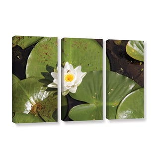 ArtWall 'Cody York's Lily Pad' 3 Piece Gallery Wrapped Canvas Set
