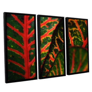 ArtWall 'Kathy Yates's Croton Abstract' 3-piece Floater Framed Canvas Set