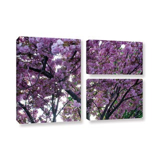 ArtWall 'Dan Wilson's Spring Flowers' 3-piece Gallery Wrapped Canvas Flag Set