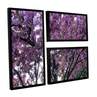 ArtWall 'Dan Wilson's Spring Flowers' 3-piece Floater Framed Canvas Flag Set