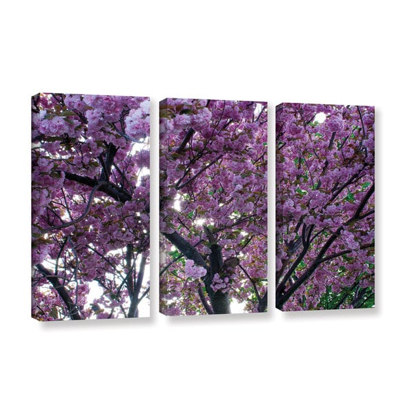 ArtWall 'Dan Wilson's Spring Flowers' 3-piece Gallery Wrapped Canvas Set
