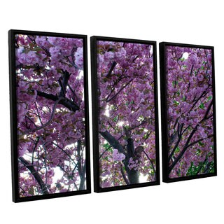 ArtWall 'Dan Wilson's Spring Flowers' 3-piece Floater Framed Canvas Set