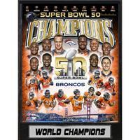 Super Bowl 50 Champions Denver Broncos 9 x 12 Plaque
