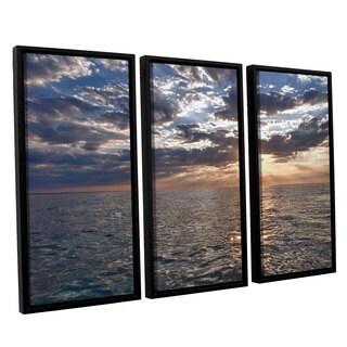 ArtWall 'Dan Wilson's Lake Erie Sunset I' 3-piece Floater Framed Canvas Set