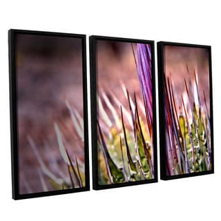 ArtWall 'Mark Ross's Agave' 3-piece Floater Framed Canvas Set