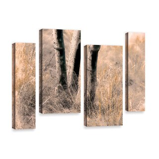 ArtWall 'Linda Parker's Desert Grasses II ' 4-piece Gallery Wrapped Canvas Staggered Set