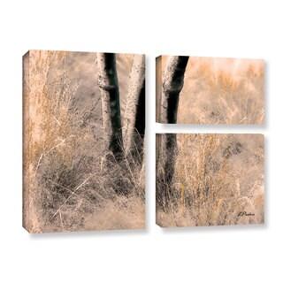 ArtWall 'Linda Parker's Desert Grasses II ' 3-piece Gallery Wrapped Canvas Flag Set