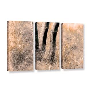 ArtWall 'Linda Parker's Desert Grasses II ' 3-piece Gallery Wrapped Canvas Set