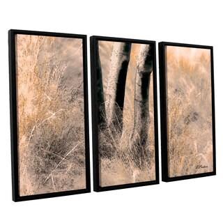 ArtWall 'Linda Parker's Desert Grasses II ' 3-piece Floater Framed Canvas Set