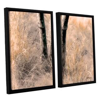 ArtWall 'Linda Parker's Desert Grasses II ' 2-piece Floater Framed Canvas Set