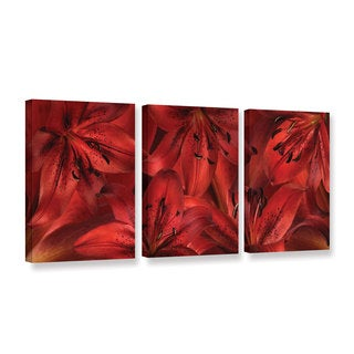 ArtWall 'Cora Niele's Lily Landscape Red' 3-piece Gallery Wrapped Canvas Set