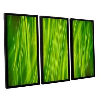 ArtWall 'Cora Niele's Hordeum' 3-piece Floater Framed Canvas Set