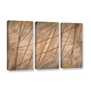 ArtWall 'Cora Niele's Deschampsia' 3-piece Gallery Wrapped Canvas Set