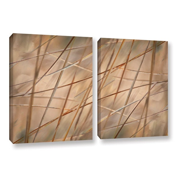 ArtWall 'Cora Niele's Deschampsia' 2-piece Gallery Wrapped Canvas Set