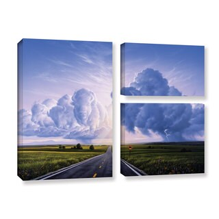 ArtWall 'Jerry Lofaro's Buffalo Crossing' 3-piece Gallery Wrapped Canvas Flag Set