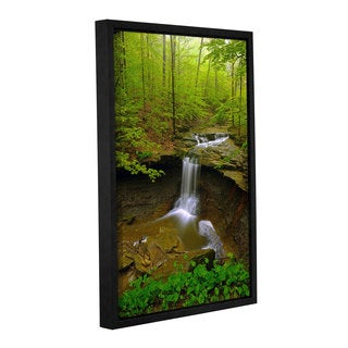 Antonio Raggio's 'Water Falls' Gallery Wrapped Floater-framed Canvas