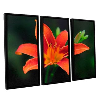 Antonio Raggio's 'Petals in Focus' 3-piece Floater Framed Canvas Set