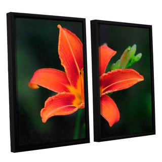 Antonio Raggio's 'Petals in Focus' 2-piece Floater Framed Canvas Set