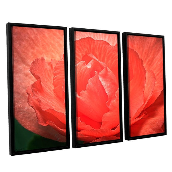 Antonio Raggio's 'Flower Petals' 3-piece Floater Framed Canvas Set