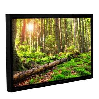 ArtWall 'Dragos Dumitrascu's Back to Green' Gallery Wrapped Floater-framed Canvas